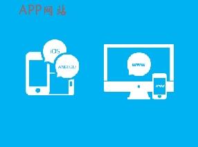 APP网站