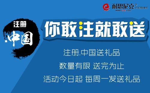 .中国域名